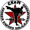 """Наши проекты и Дела #2: """"Верцинский Константин и СКиМ"""""""