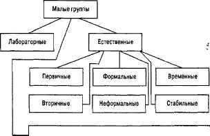Виды малых групп