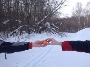 Лыжи мандарин
