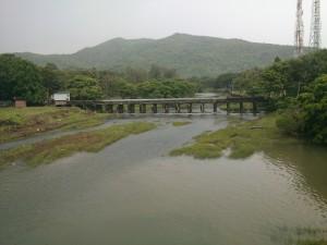 Река, образовавшаяся от дождей