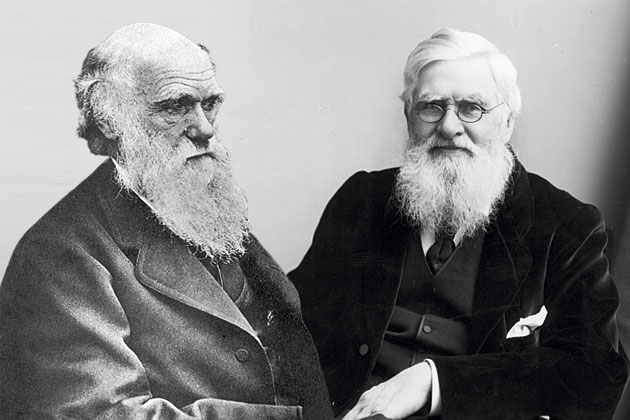 Дарвин и Уоллес