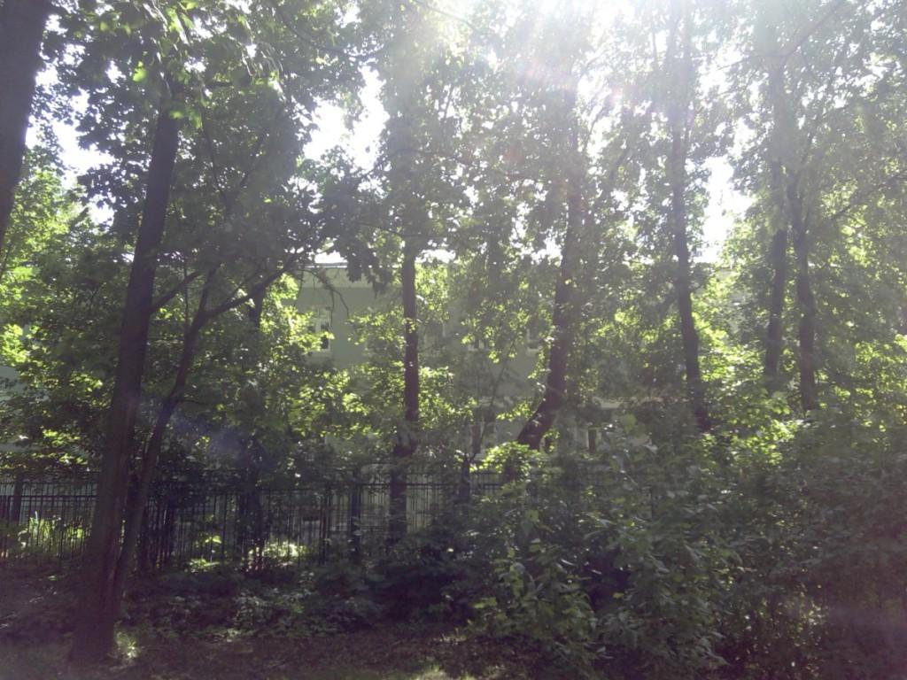 Вид со двора на садик Родиона