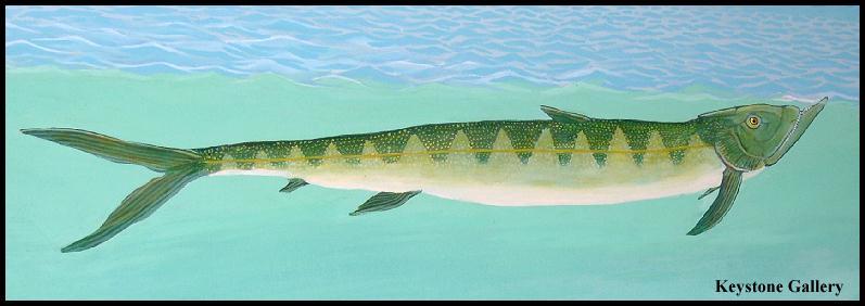 Рыба смейства Ichthyodectidae, к которым относится завроцефалус
